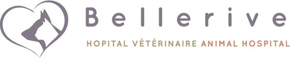 Hôpital Vétérinaire Bellerive